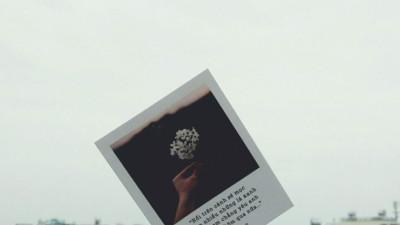 Lỡ thương người không chịu trưởng thành...
