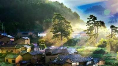 Cặp vợ chồng trẻ quyết tâm rời phố thị về sống trong ngôi nhà ấm cúng, làm bạn cùng mây núi