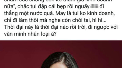 """Bà xã Bình Minh bày tỏ bức xúc khi bà Lê Hoàng Diệp Thảo được khuyên """"nên lui về chăm sóc gia đình"""""""